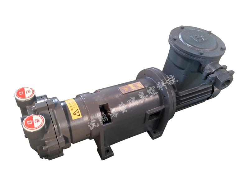 防爆2BV6水环真空泵